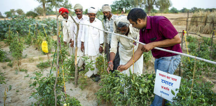 A list of 11 large agriculture CSR projects in India- CSRBOX
